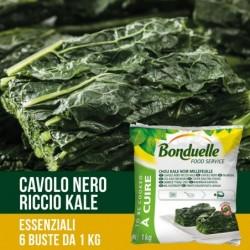 CAVOLO NERO RICCIO KALE KG 1 BONDUELLE