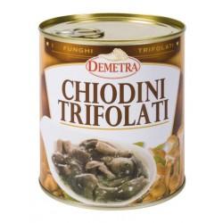CHIODINI TRIFOLATI 4/4 GR 800 DEMETRA