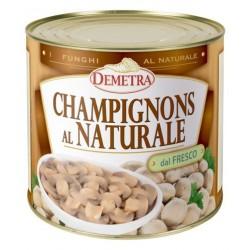 CHAMPIGNONS fette NAT DAL FRESCO latta 3/1 kg.2