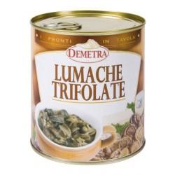 LUMACHE TRIFOLATE 4/4 GR 840 DEMETRA