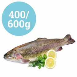 TROTE SALMONATE EVISCERATE 400-600g