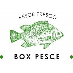 BOX PESCE