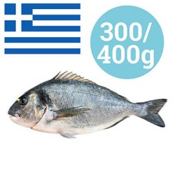 ORATA 300-400 gr